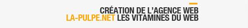 - 2009 Création de l'agence web la-pulpe.net, les vitamines du web