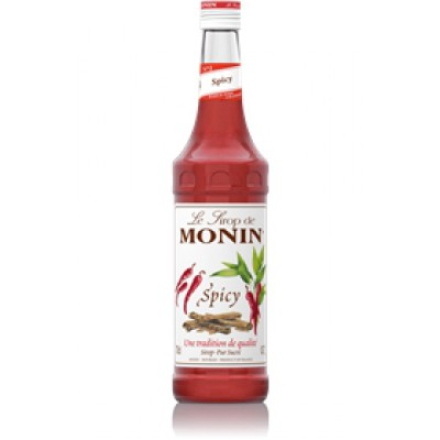 Sirop Monin Spicy
