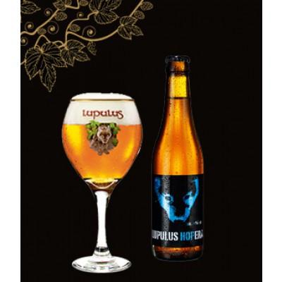 Bouteille de bière LUPULUS HOPERA 6°