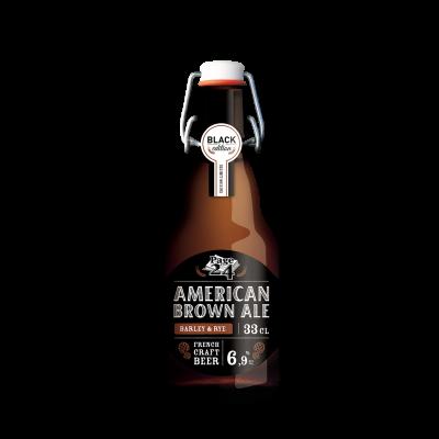 Bouteille de bière PAGE 24 AMERICAN BROWN ALE 6.9° VP33CL
