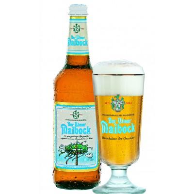 Bouteille de bière ULMER MAIBOCK 7.3° X 10