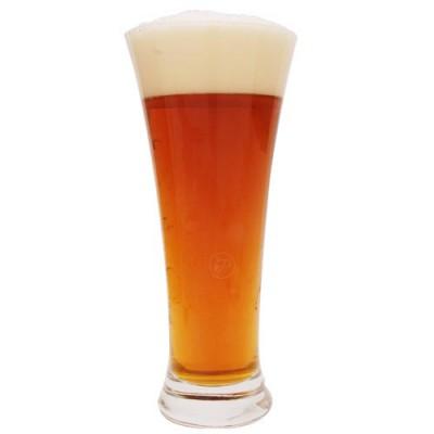 Verre à bière Martigue 33cl