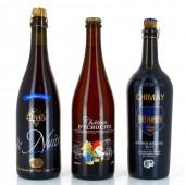 Lot Bières vieillies en fût - 3 bouteilles de 75cl